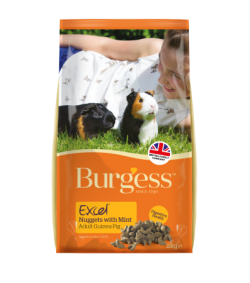 Burgess Excel Guinea Pig Pellets with Mint 4kg|