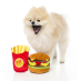 FuzzYard Dog Toy Hamburger|
