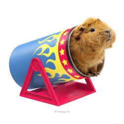 HayPigs Cavy Cannonball Tilting Tunnel|