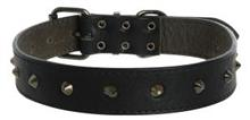 Cocovana Stud Collar Black Large|