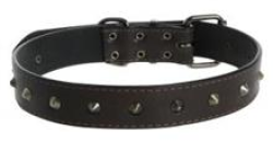 Cocovana Stud Collar Chocolate Large|