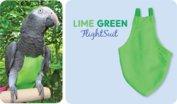 Flight Suit Bird Diaper - Colossal, Lime Green|