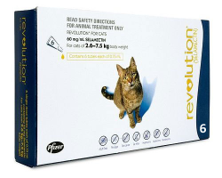 Revolution Cats Blue 2.6-7.5kg 6 Pack|