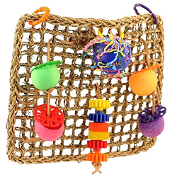 Super Bird Creations Seagrass Foraging Wall Bird Toy|