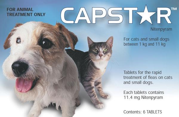 Capstar Small Dog Amp Cat Flea Treatment 6 Tablets