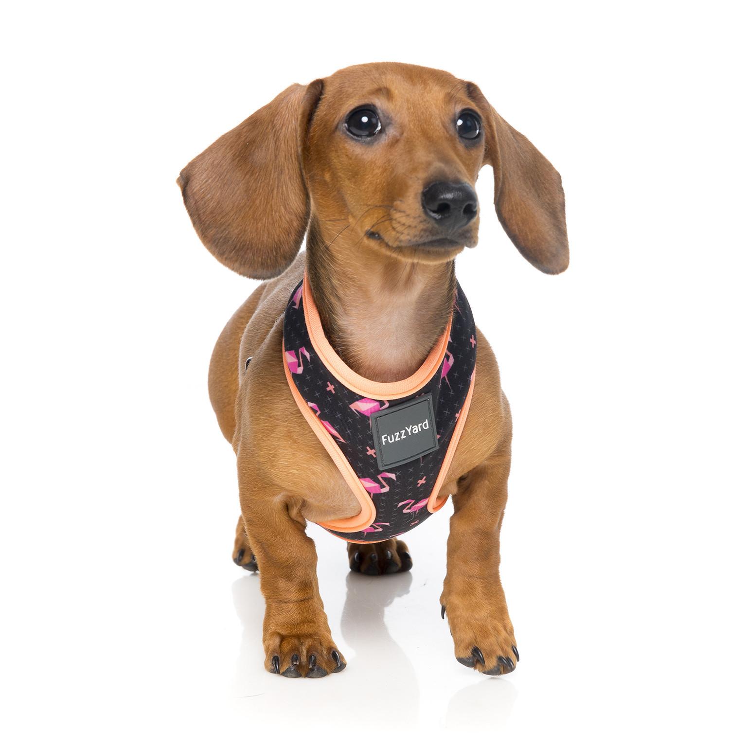 Fuzzyard Fabmingo Dog Harness Medium
