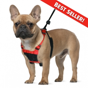 Pet Shop Direct Sporn Mesh Non Pull Harness Black Small