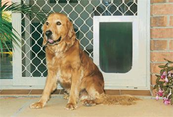 Petway Security Pet Door   Stone Beige, Large|