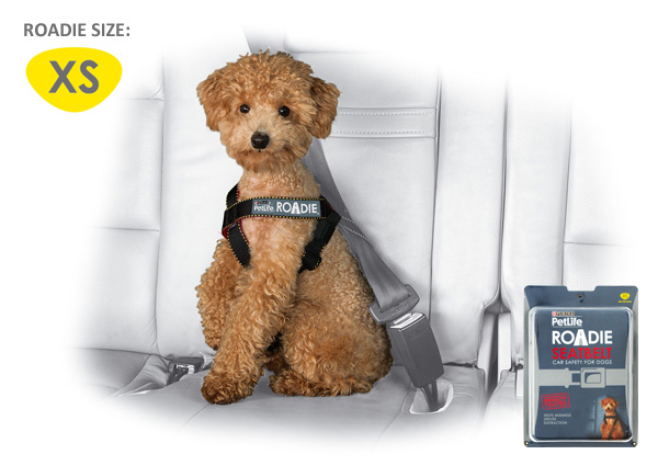 Purina roadie harness